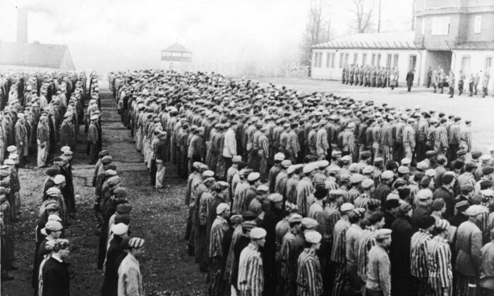 Polish prisoners in striped uniforms stand in rows before Nazi officers at the Buchenwald Concentration Camp, Weimar, Germany, World War II, circa 1943. (Frederic Lewis/Getty Images)