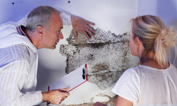 A proper home inspection by an individual trained in inspecting a home has several advantages over other options. (PPC Photography Cologne/Shutterstock)