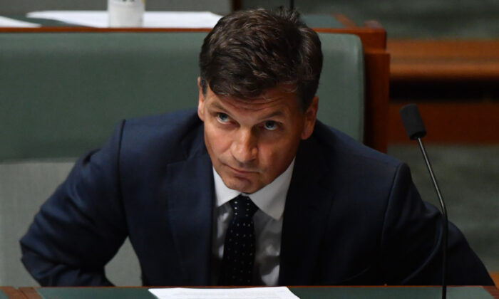 Minister for Energy Angus Taylor during Question Time in the House of Representatives at Parliament House in Canberra, Australia on Feb 2, 2021. (Photo by Sam Mooy/Getty Images)