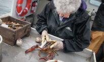 101-Year-Old Maine Woman Has Lobstered Since She Was 8—Claims She Will Retire 'When I Die'