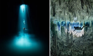 Diver Explores Underwater Caves in Mexico—and the Photos Are Unreal