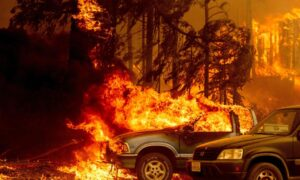 Climate Change Isn't Driving Western Wildfires; Government Mismanagement Is to Blame