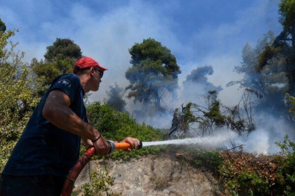 Wildfire erupts north Evia
