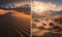 Traveler Photographs Surreal Siberian Desert Bordered by Ice-Capped Mountains, Lakes, and Forests