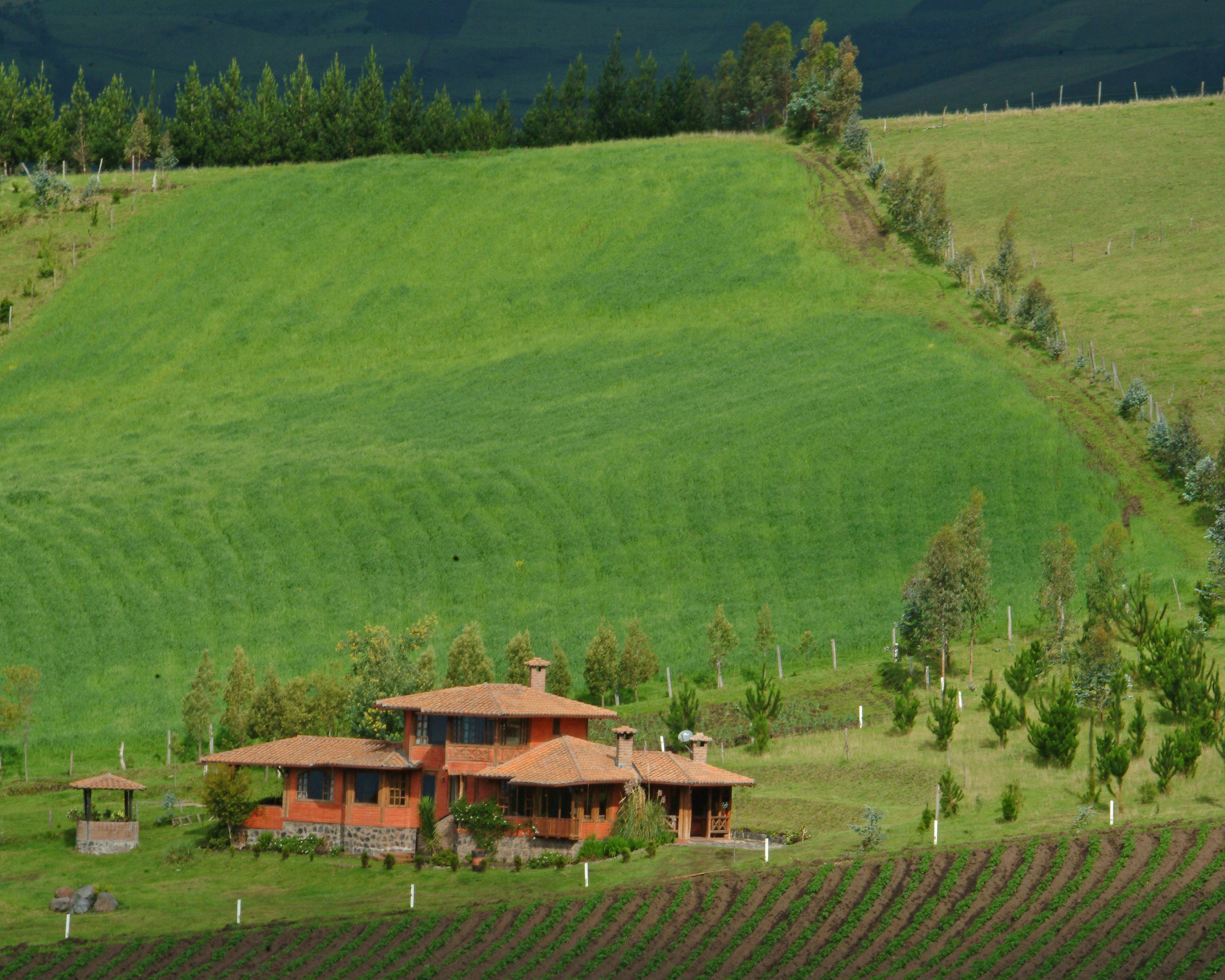 FARM IN ANDES