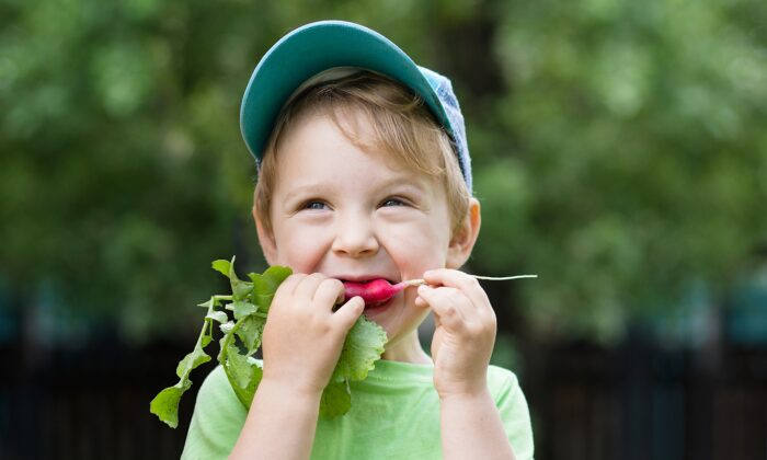 Besides being eaten plain, radishes can be baked, sauteed, sliced in salads, or pickled in kimchi. The roots and leaves are both edible and nutritious. (Elena Zakh/Shutterstock)