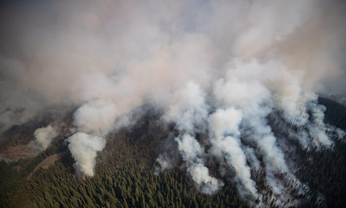 The White Rock Lake wildfire burns west of Vernon, B.C., on Aug. 12, 2021. (The Canadian Press/Darryl Dyck)