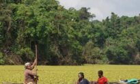 Saving a Cameroonian Lake From an Invasive Plant