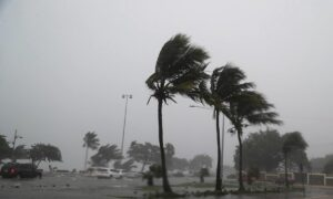 Fred May Regain Tropical Storm Strength as It Nears Florida