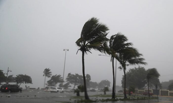 Palm trees sway in the wind during the passage of Tropical Storm Fred in Santo Domingo, Dominican Republic, on Aug. 11, 2021. (Ricardo Rojas/Reuters)