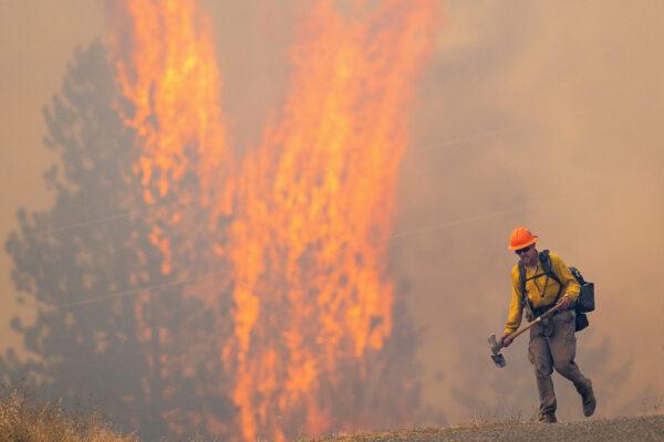 a wildland firefighter