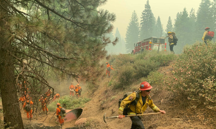 CalFire firefighters and California Correctional Center (CCC) inmates fight a spot fire on the side of Highway CA-36 between Chester and Westwood in Plumas County, Calif., on Aug. 13, 2021. (Eugene Garcia/AP Photo)