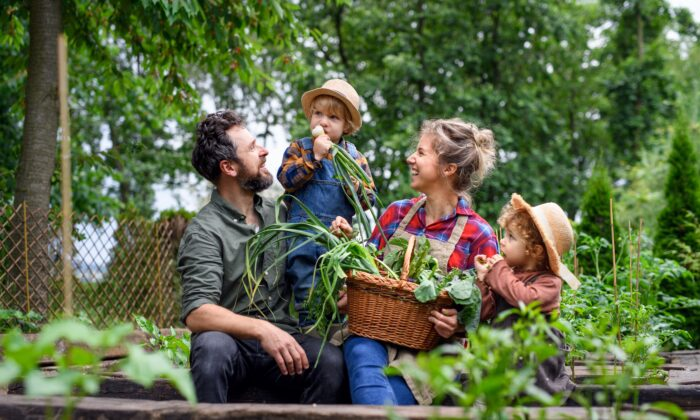 Growing food in healthy soil for our families and visiting local organic farms are enriching activities that connect us with our traditions and each other. (Halfpoint/Shutterstock)