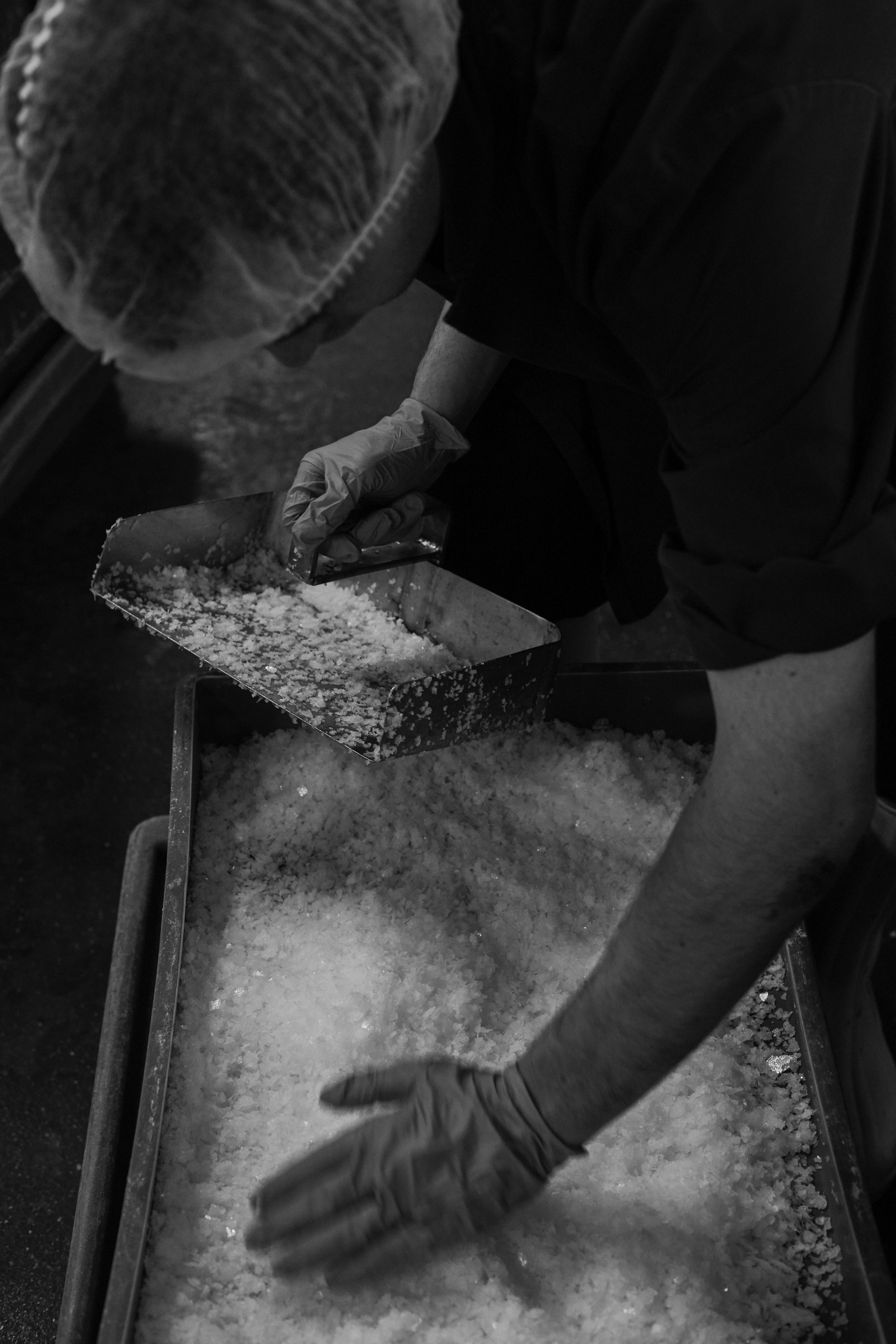 hand harvesting sea salt halen mon