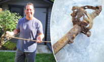 Man Finds British Rifleman's Sword From 1890s While Building Deck in His Backyard