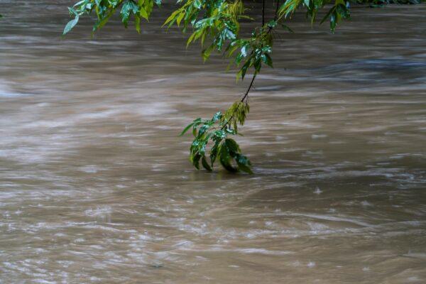 Water rises in Peachtree Creek