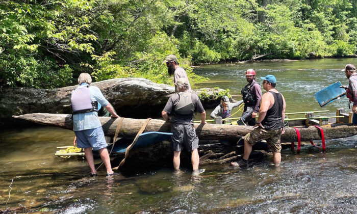 (Courtesy of Chattooga Conservancy)