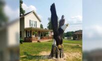 Ohio Craftsman Sculpts Massive Wooden Bald Eagles for Veterans: 'I Am Humbled'