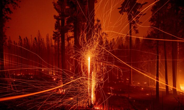 In a long time exposure photo, embers fly from burning trees as the Caldor Fire growing on Mormom Emigrant Trail east of Sly Park, Calif., on Aug. 17, 2021. (Ethan Swope/File/AP Photo)