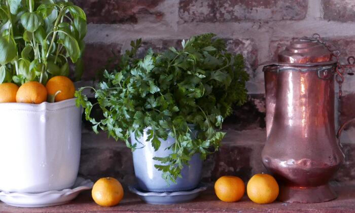 Not much space is needed to keep your own herb garden. (Victoria de la Maza)