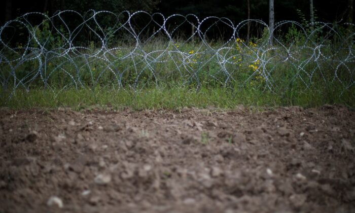 Barbered wire is pictured at the Polish-Belarusian border near the village of Usnarz Gorny, Poland, on Aug. 23, 2021. (Kacper Pempel/Reuters)