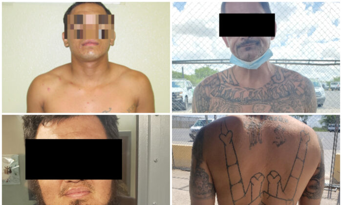Criminals and gang members recently arrested by Border Patrol after illegally entering the United States. (CBP)