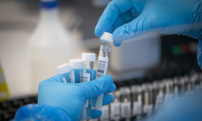 Patient samples are transferred by scientists into plates before entering the PCR (Polymerase Chain Reaction) process for COVID-19 testing at the Glasgow Lighthouse coronavirus testing facility, in Glasgow, UK, in an undated file photo. (Jane Barlow/PA)