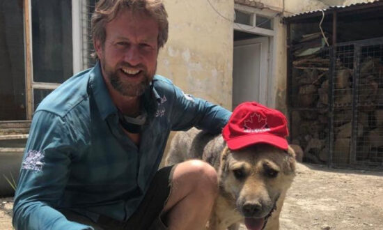 Animal Shelter Convoy Led by Former UK Marine 'Stuck' at Kabul Airport