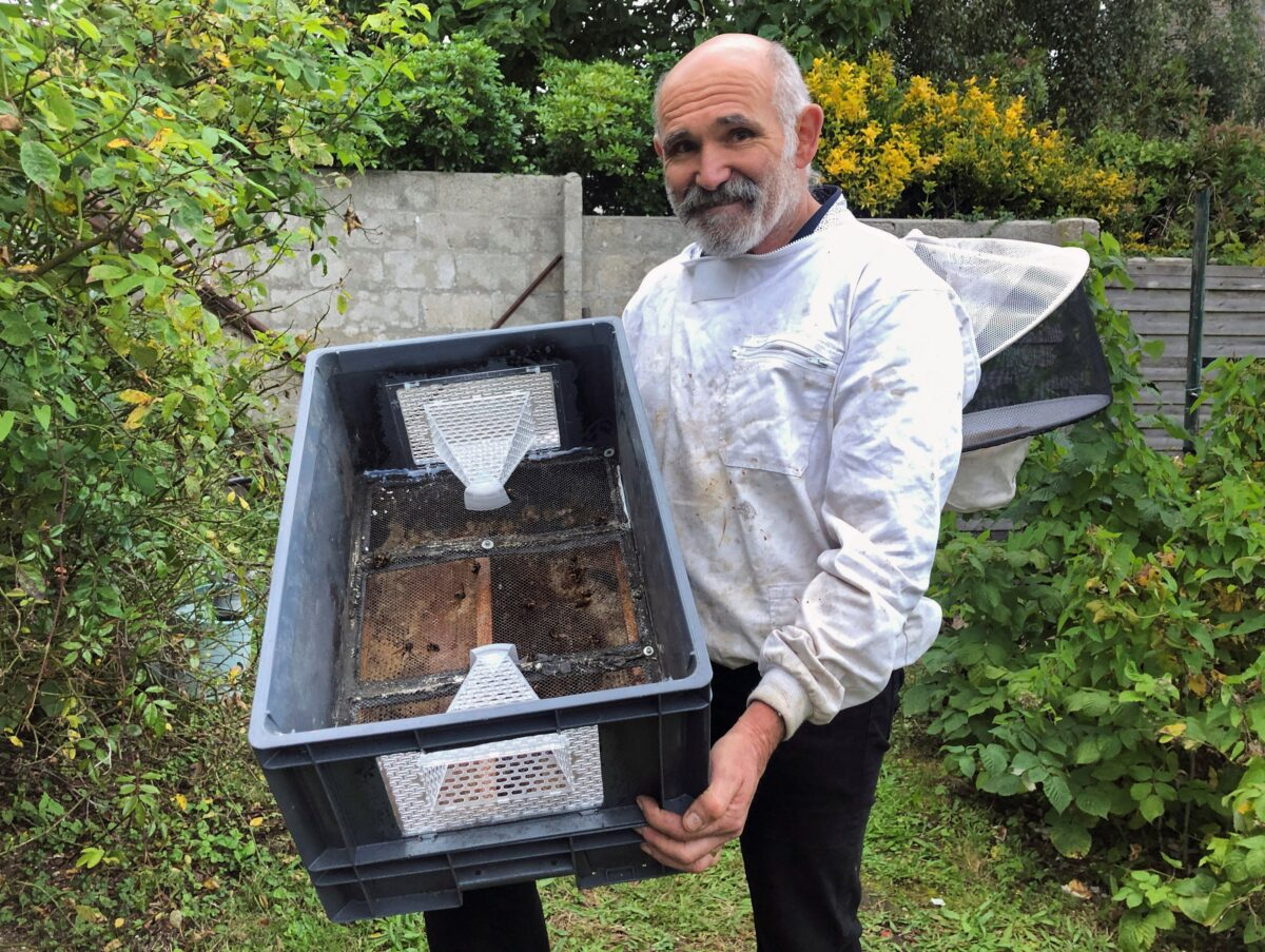 French beekeeper invents 'murder hornet' trap to protect bee hives