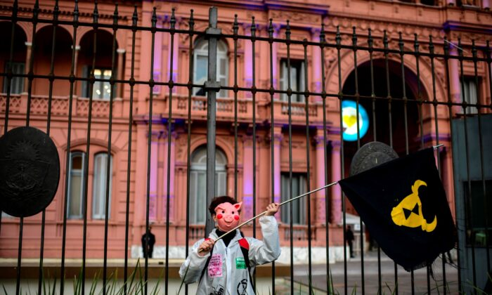 A demonstrator takes part in a protest against an initial agreement between Argentina and China to produce and export pork and demand the protection of the wetlands which are suffering from the worst fires in decades, in front of Casa Rosada Presidential Palace in Buenos Aires, on Aug. 31, 2020. (Ronaldo Schemidt/AFP via Getty Images)