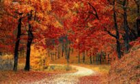 For a Productive Fall, Schedule These 5 Seasonal Priorities Now
