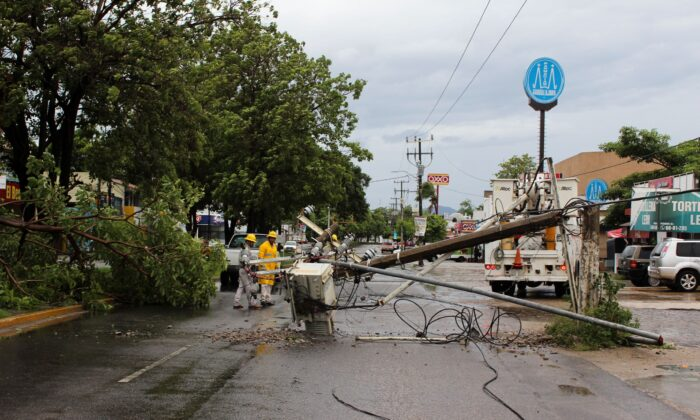 A fallen tree and electricity pole are pictured as Hurricane Nora approaches Manzanillo, in Colima state, Mexico, on Aug. 28, 2021. (Jesus Lozoya/Reuters)