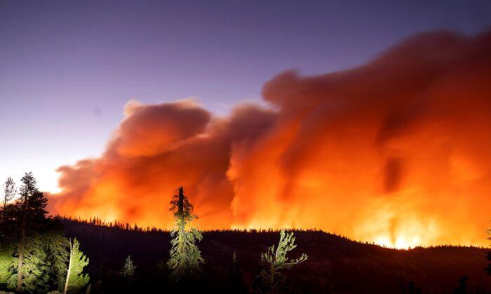 The Caldor Fire burns in Eldorado National Forest, Calif., on Aug. 29, 2021. (Noah Berger/AP Photo)