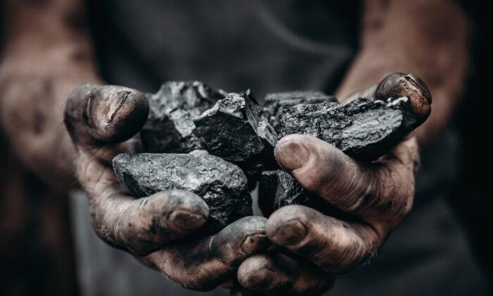Miner holds coal. (Parilov/Adobe Stock)