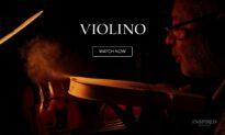 New Release:  Violino