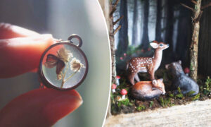 Photos: Miniature Artist Creates Fairytale Worlds With Wildlife Scenes and Wearable Jewelry