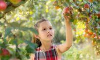 Healthiest Produce That's in Season