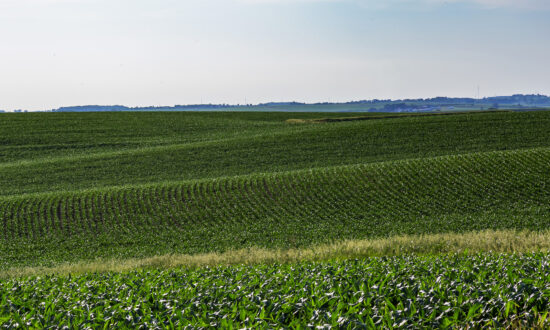 Iowa Farm Services Firm: Systems Offline Due to Cybersecurity Incident