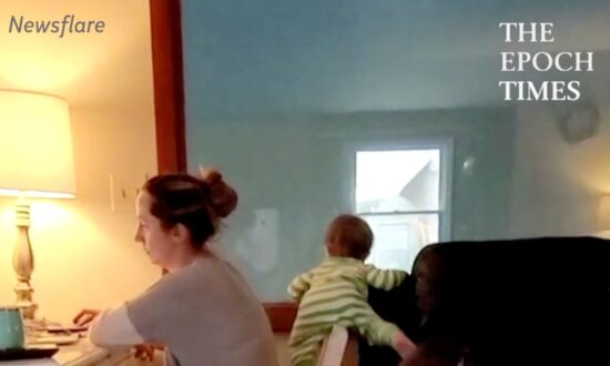 Twin Babies Do Everything in Their Power to Distract Mom From Work