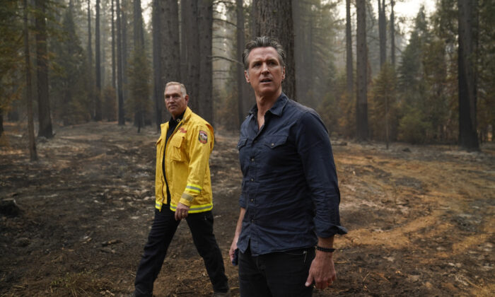 California Gov. Gavin Newsom and Cal Fire Chief Thom Porter tour the area scorched by the Caldor Fire in Eldorado National Forest, Calif., on Sept. 1, 2021. (Jae C. Hong/AP Photo)
