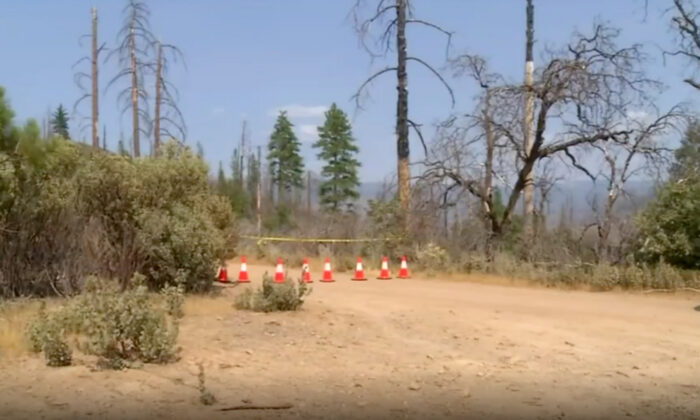 A campground is seen in the area in which a family died in Mariposa County, Calif., in August 2021. (KFSN)