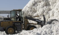 Cotton Prices Surge to Highest Levels in a Decade
