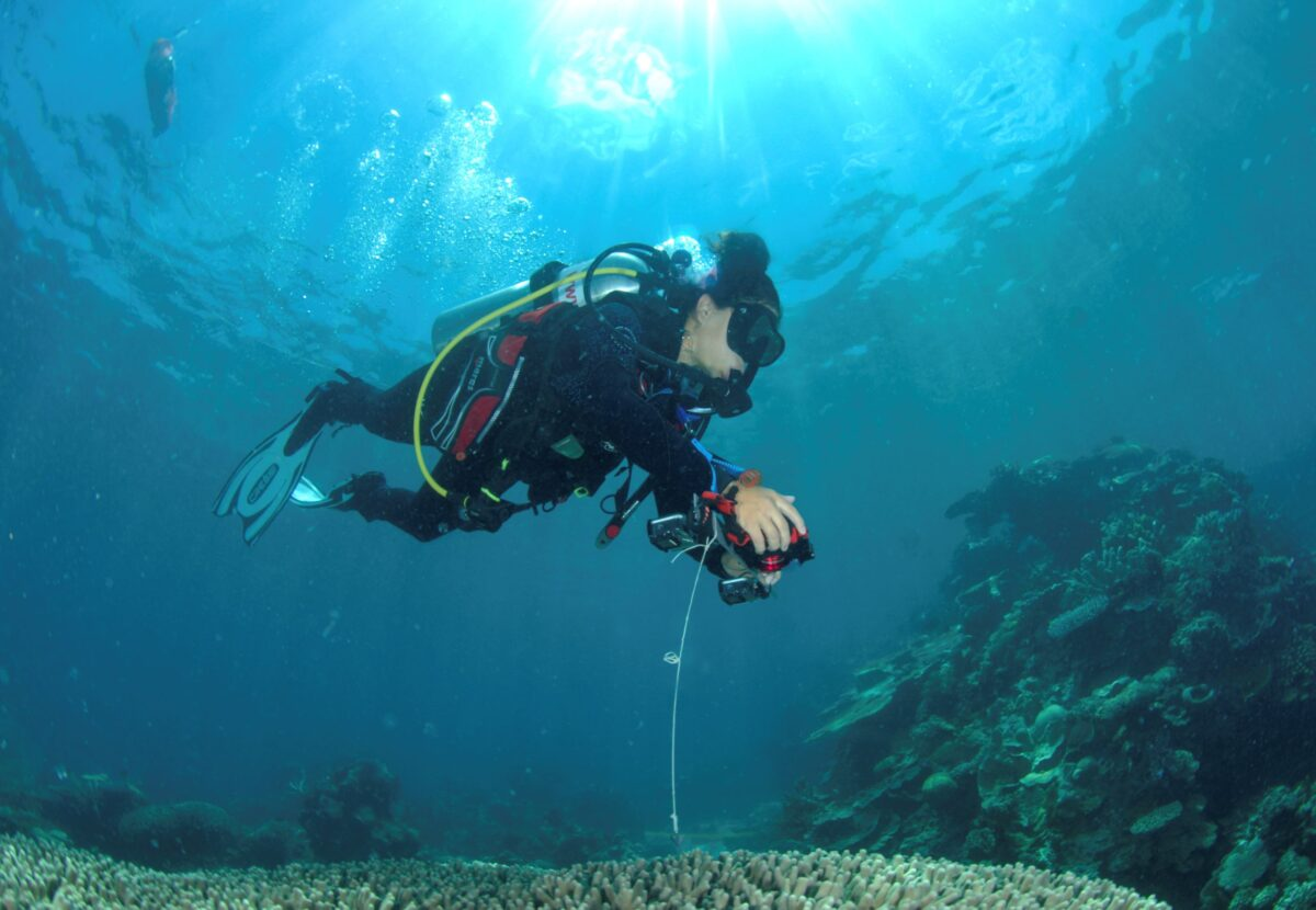 collects georeferenced data on the Great Barrier Reef