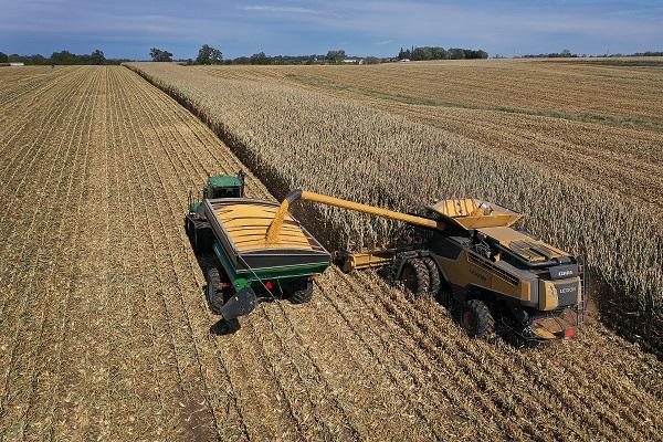 A combine harvests corn near Baxter, Iowa, on Oct. 12, 2019. (Joe Raedle/Getty Images)