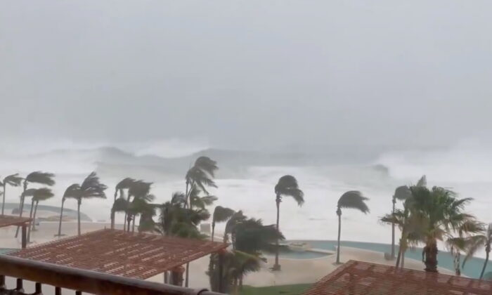 Trees sway amidst heavy rain as Hurricane Olaf sweeps through Cabo San Lucas, Baja California, Mexico, in this still image taken from a social media video on Sept. 9, 2021. (Dominique Torres Williams/via Reuters)