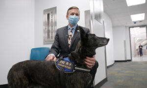 Deep Dive (Sept. 17): Miami Airport First to Use Virus-Sniffing Dogs