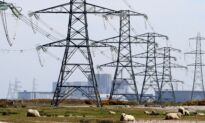 UK Wholesale Energy Prices Soar After Power Grid Hit by Fire