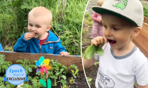 Video: Boy, 4, Eats Veggies Straight From the Garden, Has Amazing Memory for Food Facts