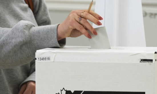 Election Panel: The Final Push
