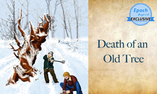 Ancient Tales of Wisdom: Death of an Old Tree